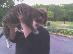 Big_cat_2